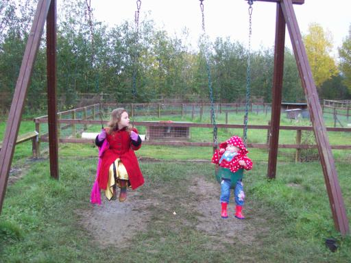 Sisters on the swings at Prom Rose Vale Farm Shop