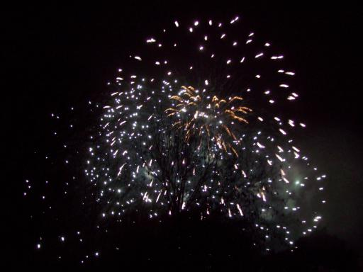 Gold and White fireworks