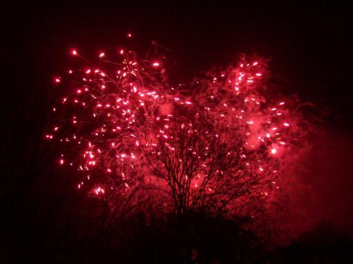 Red Firework Tree!