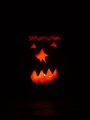 Jean's star nosed pumpkin