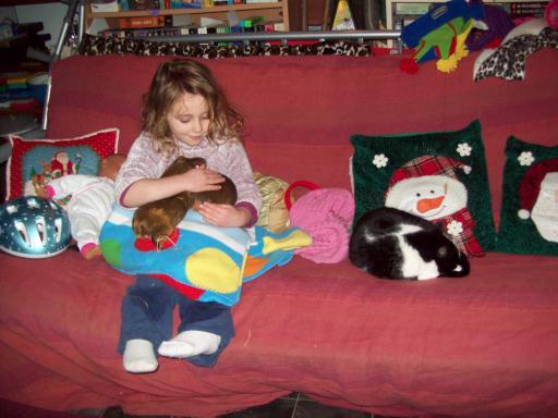 Jean, piggies and cat