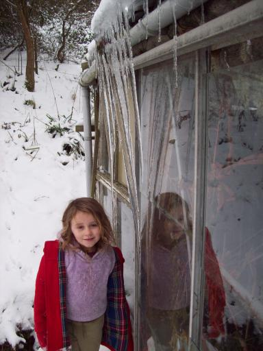 Jean and the green house icicles