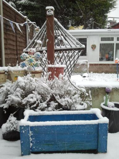 Blue plant pot in the snow