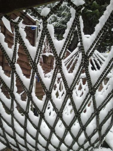 Net Snow
