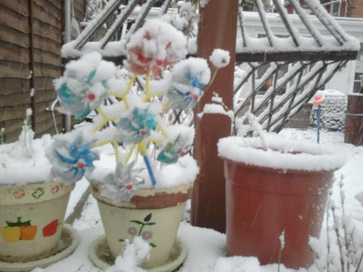 Plant pots in the snow
