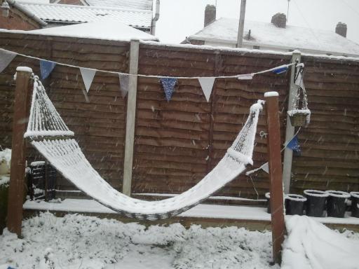 Snow Hammock