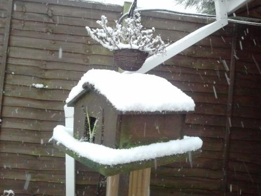 Snowy bird House
