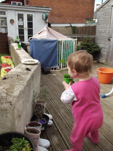 Mary moving pots about in the garden