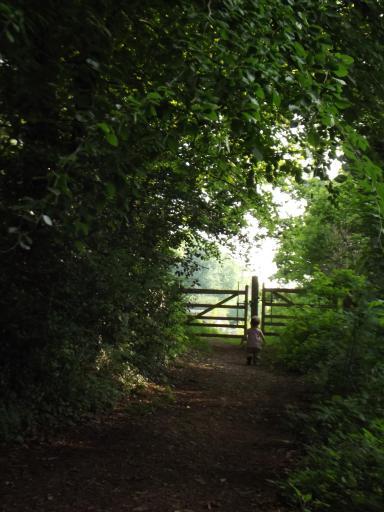 A Gate!