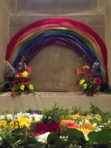 rainbow flower display