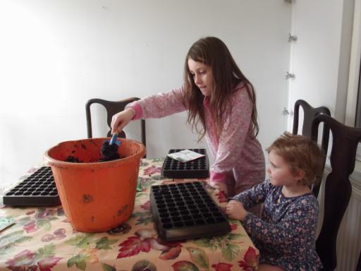 Sister potting up the seeds with wormery soil