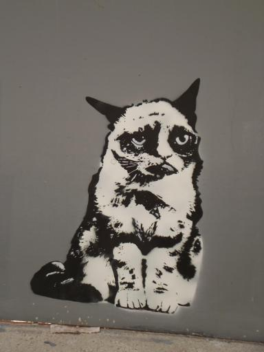 Grumpy Cat graffitti in Gloucester