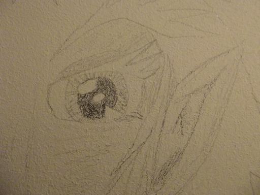 eye upon the wall