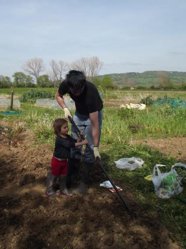 Mary helping Daddy at the allotment