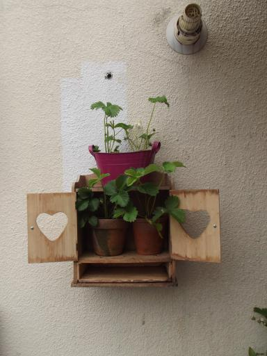 heart cabinet as wall strawberry planter