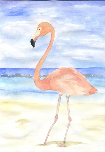 Flamingo water colours