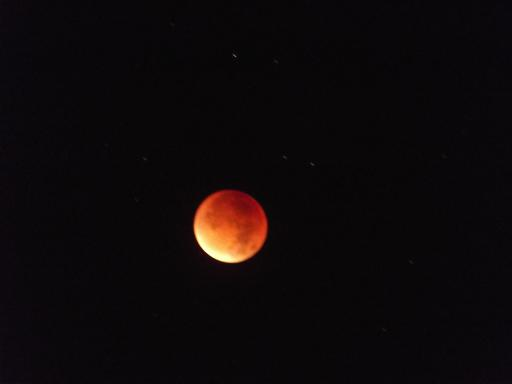 Blood Red Super Moon