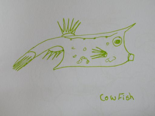 Cowfish South Africa
