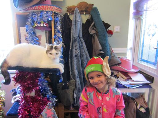 Mary Elf and Tinsel Dragon Cat plan their mischeif