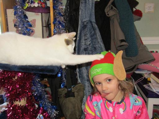Tinsel Dragon Cat anoints Sir Elf Mary
