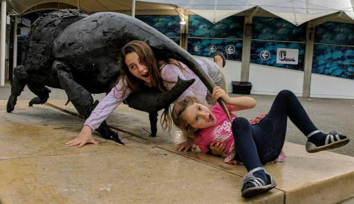 Jean and Mary being eaten by a giant stag beetle in bristol