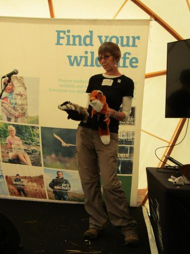 Foxes and Badgers with the Oxford Mammal Group at Country File Live
