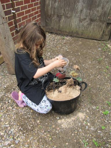 Mary building a dinosaur sanctuary